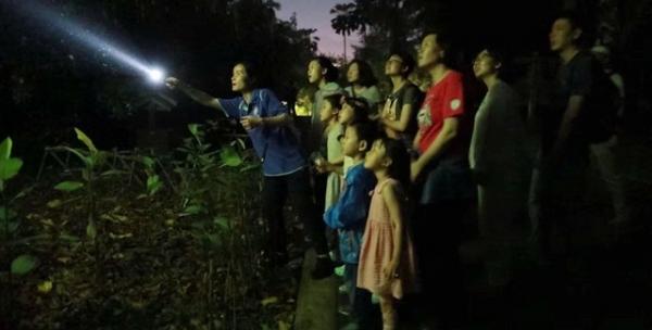 夜游植物园